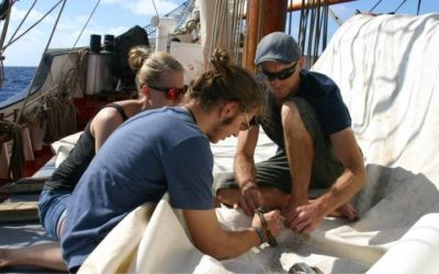 Sail Cargo and the SDGs: Goal 4 & 12