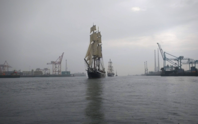 A Sailing Ship Future – The New Economy