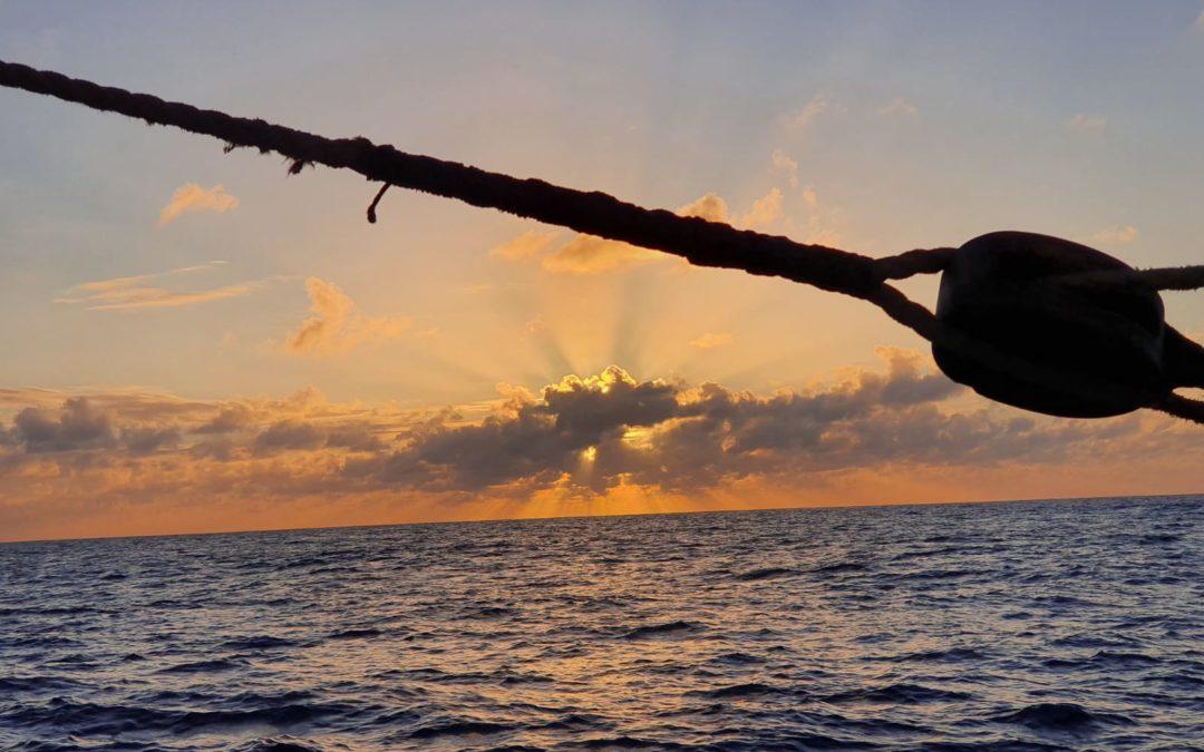 A Sailing Ship Future – The Transition